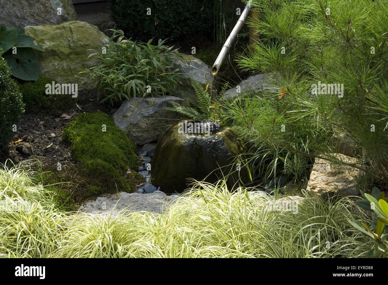 Tsukubai, Wasserbecken, Stock Photo