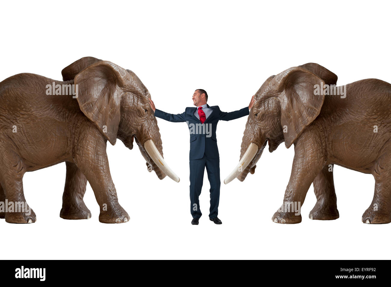 business conflict resolution mediation concept with businessman separating angry elephants - Stock Image