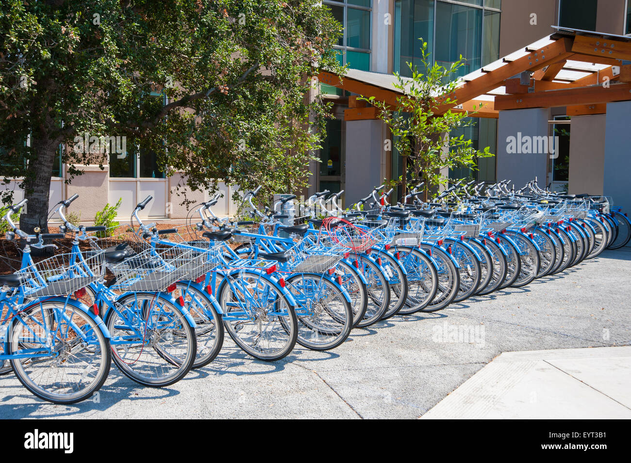 Menlo park ca august 1 bikes used by facebook employees to navigate their