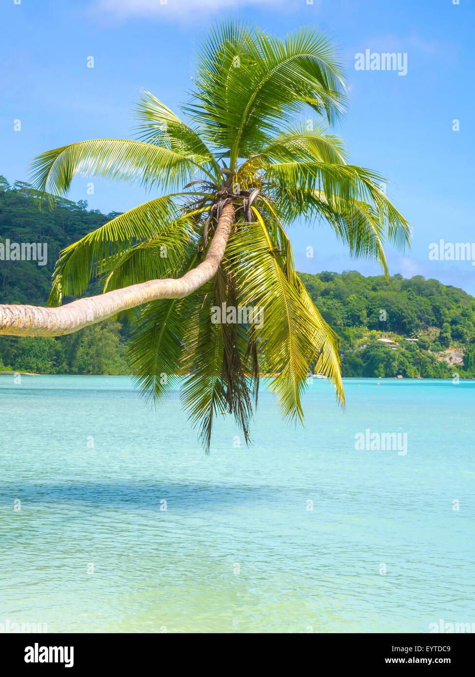 Beautiful tropical beach in Seychelles - Stock Image