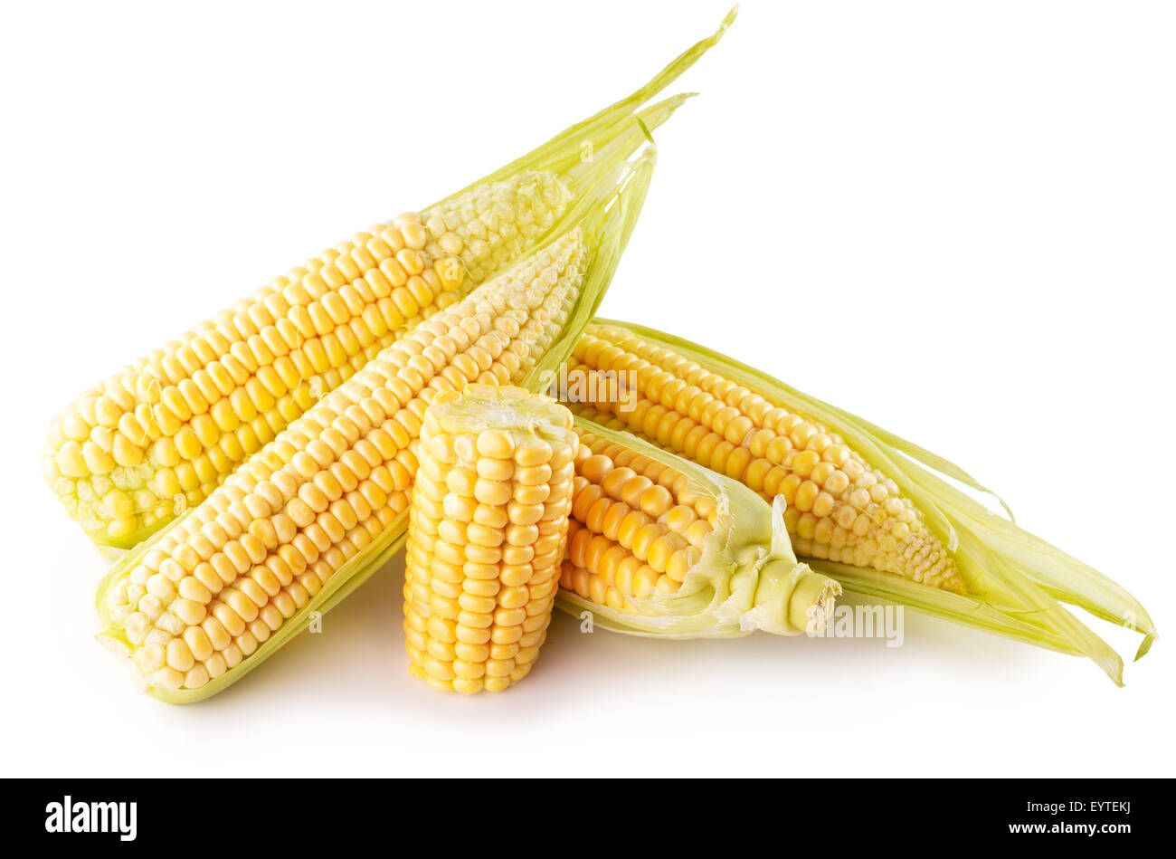 corn ears isolated on the white background. - Stock Image
