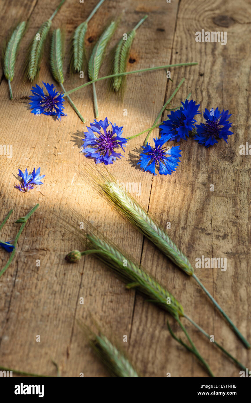 Grain and cornflowers wooden background, wood, substrate - Stock Image