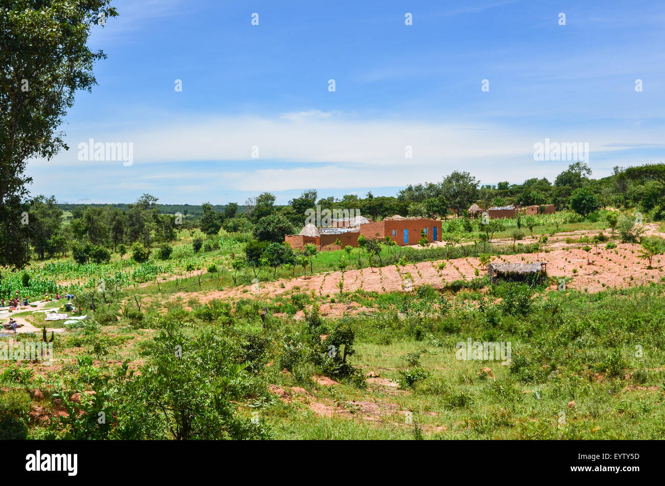Scenery of rural Angola, crops, houses - Stock Image