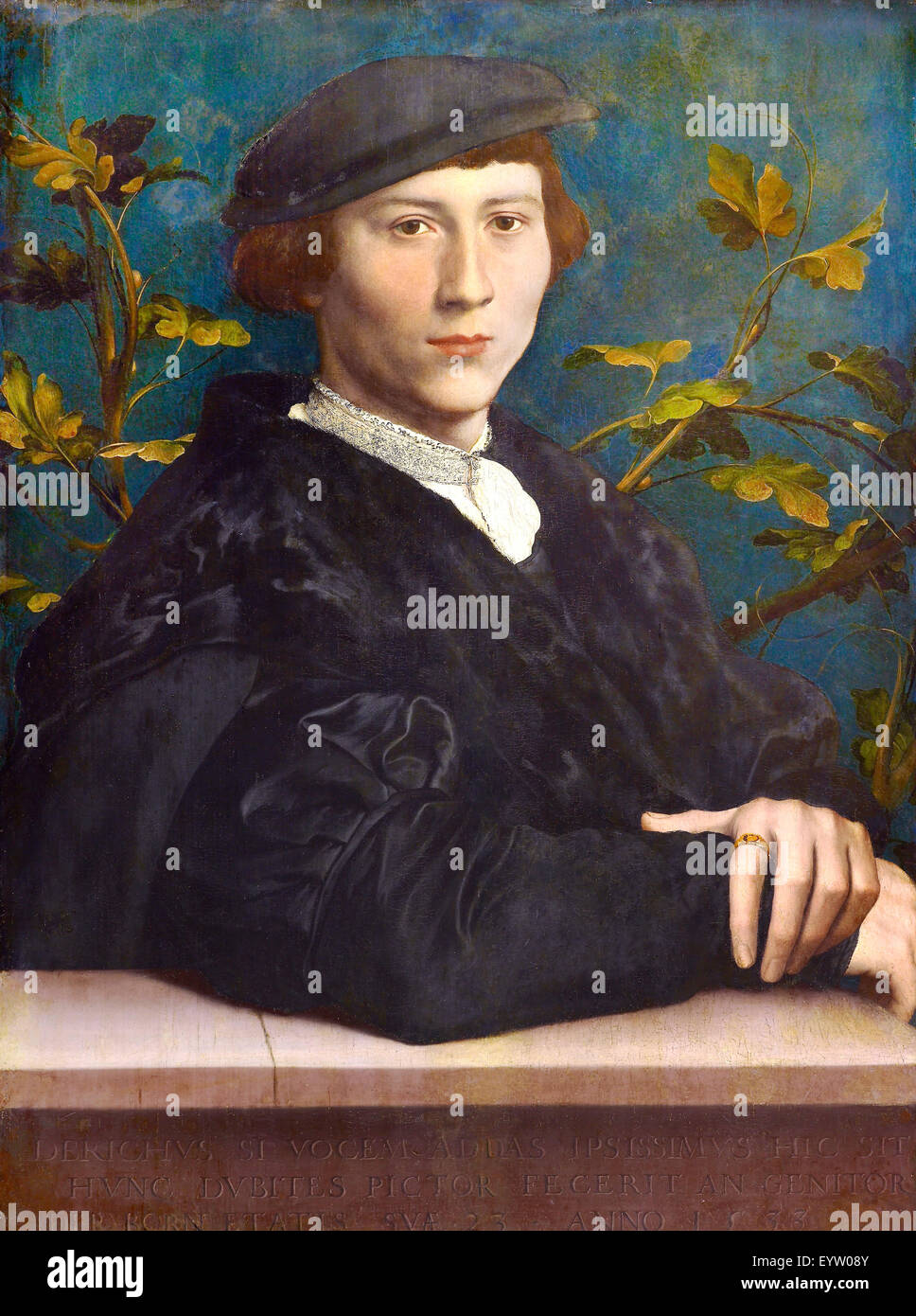 Hans Holbein the Younger, Derich Born 1533 Oil on canvas. Royal Collection of the United Kingdom. - Stock Image