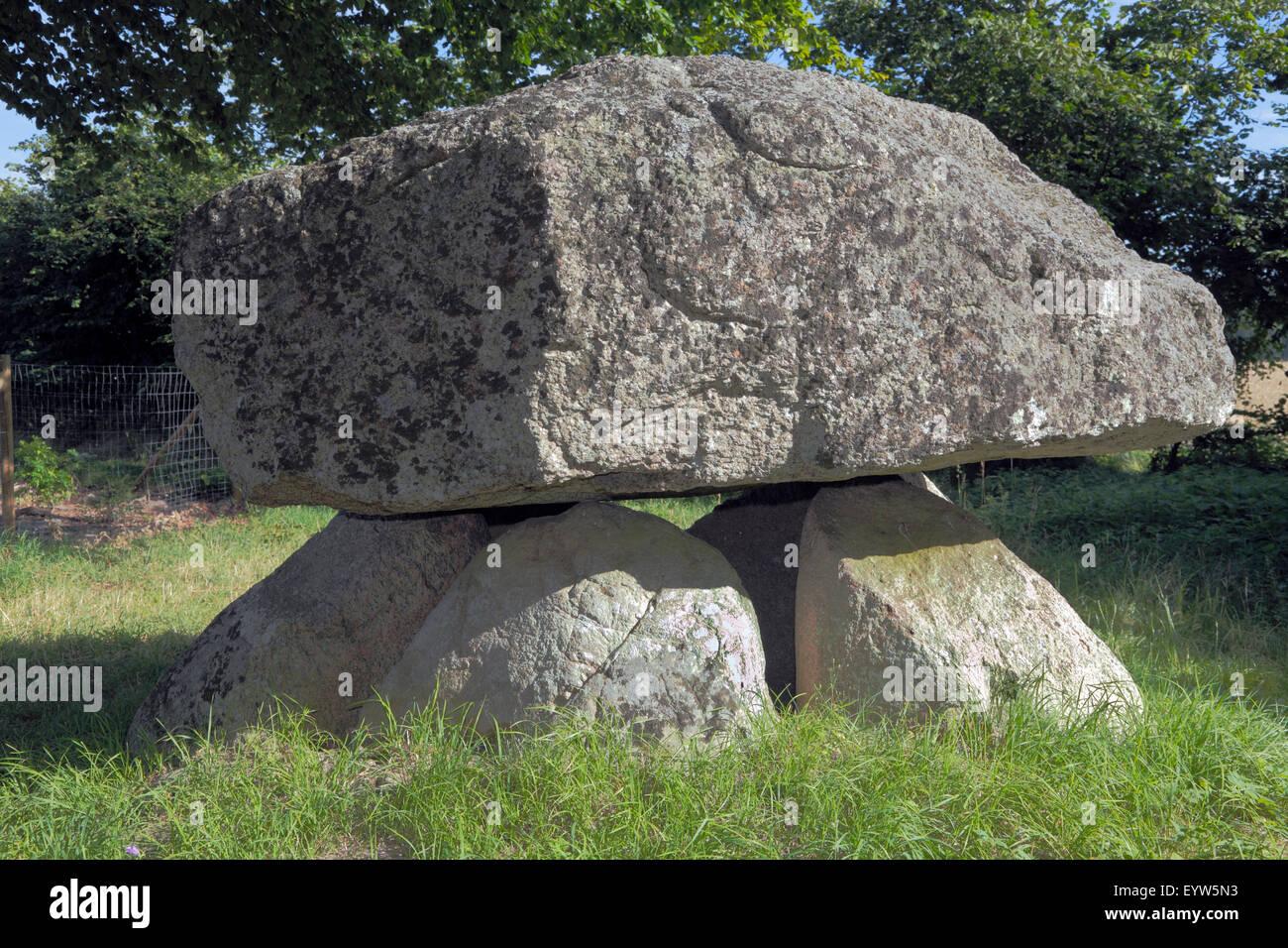 The Groennesse Dolmen Karlsstenen - Karl's Stone or Carl's Stone - Neolithic - in the Groennesse Woods about.4 - Stock Image