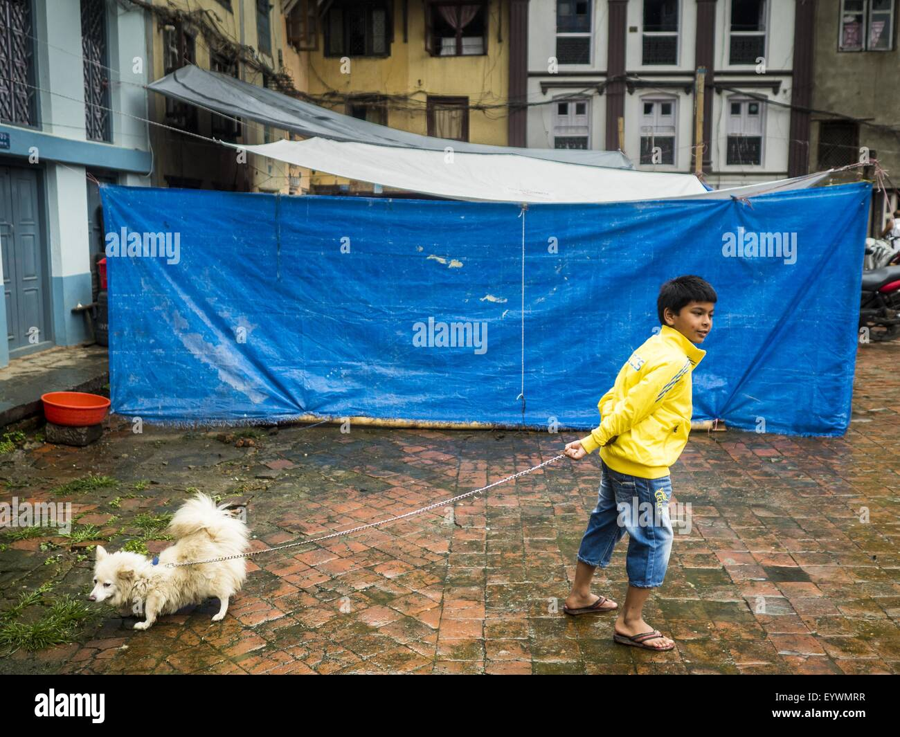 Kathmandu, Nepal. 1st Aug, 2015. A boy in Kathmandu walks his dog in front of temporary housing for people displaced - Stock Image