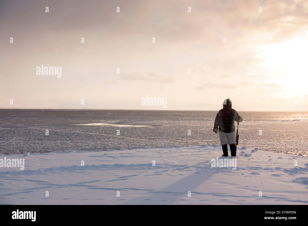 One of the last remaining Inughuit subsistence hunters, Naimanngitsoq Kristiansen, Greenland, Denmark - Stock Image
