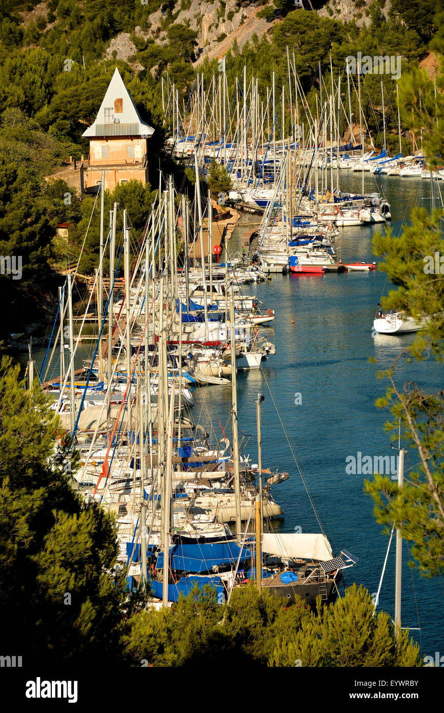 Port-Miou marina, Cassis, Bouches du Rhone, Provence, France, Europe - Stock Image