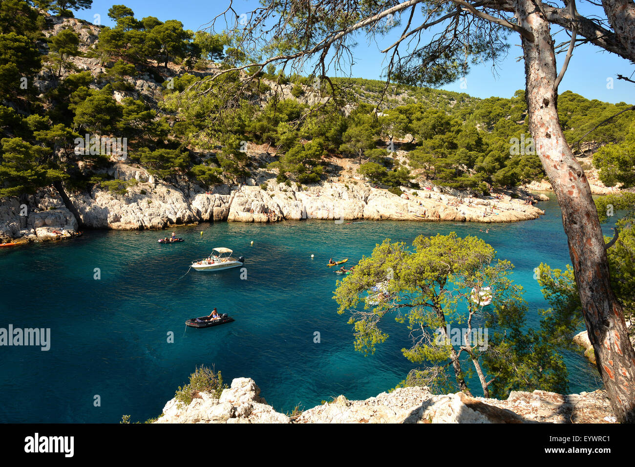 Port-Pin creek near Cassis, Bouches du Rhone, Provence, France, Europe - Stock Image