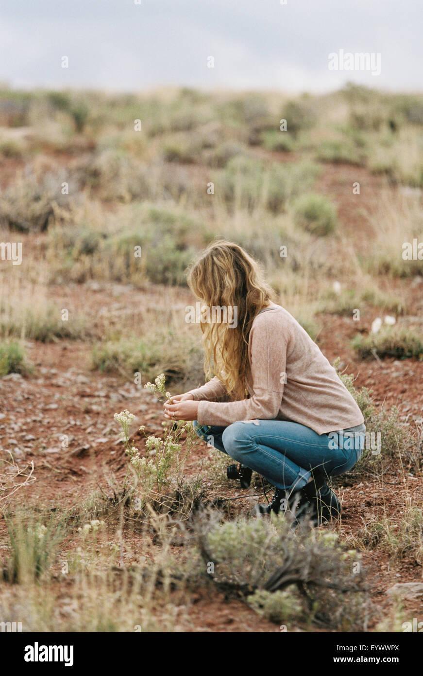 Woman kneeling in a desert, picking wild flowers. - Stock Image