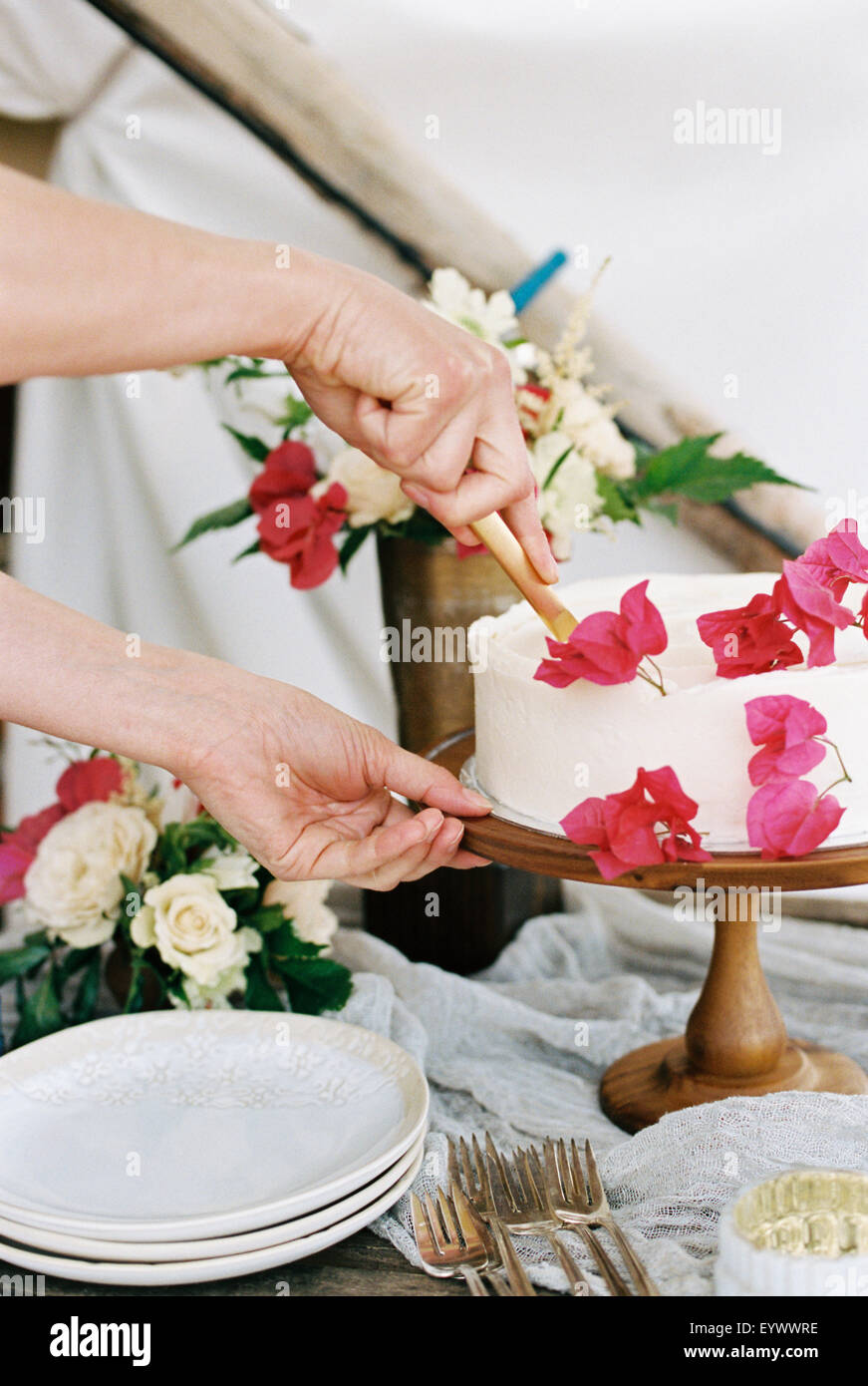woman cutting a cake with white icing - Stock Image