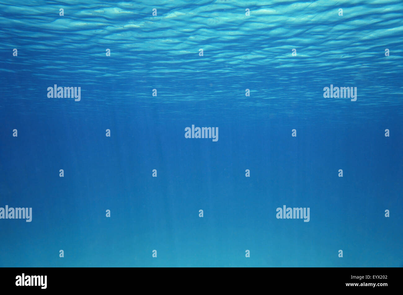 Blue underwater surface and ripples, natural scene in the Caribbean sea - Stock Image