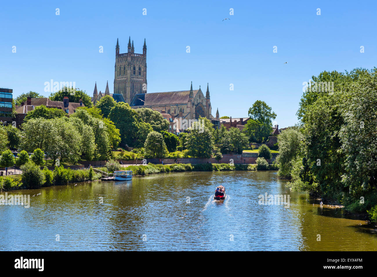 Worcester Cathedral and the River Severn from Worcester Bridge, Worcester, Worcestershire, England, UK - Stock Image
