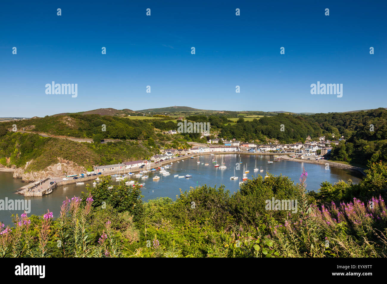 The harbour at Lower Town, Fishguard, Pembrokeshire, Wales, UK - Stock Image