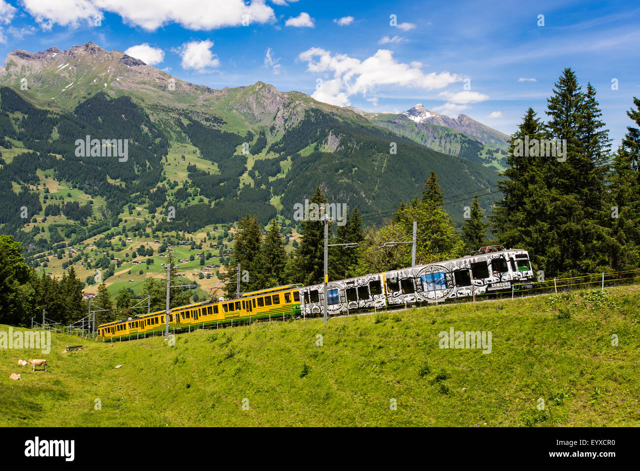 Swiss mountain railway from Grindelwald to Kleine Scheidegg - Stock Image