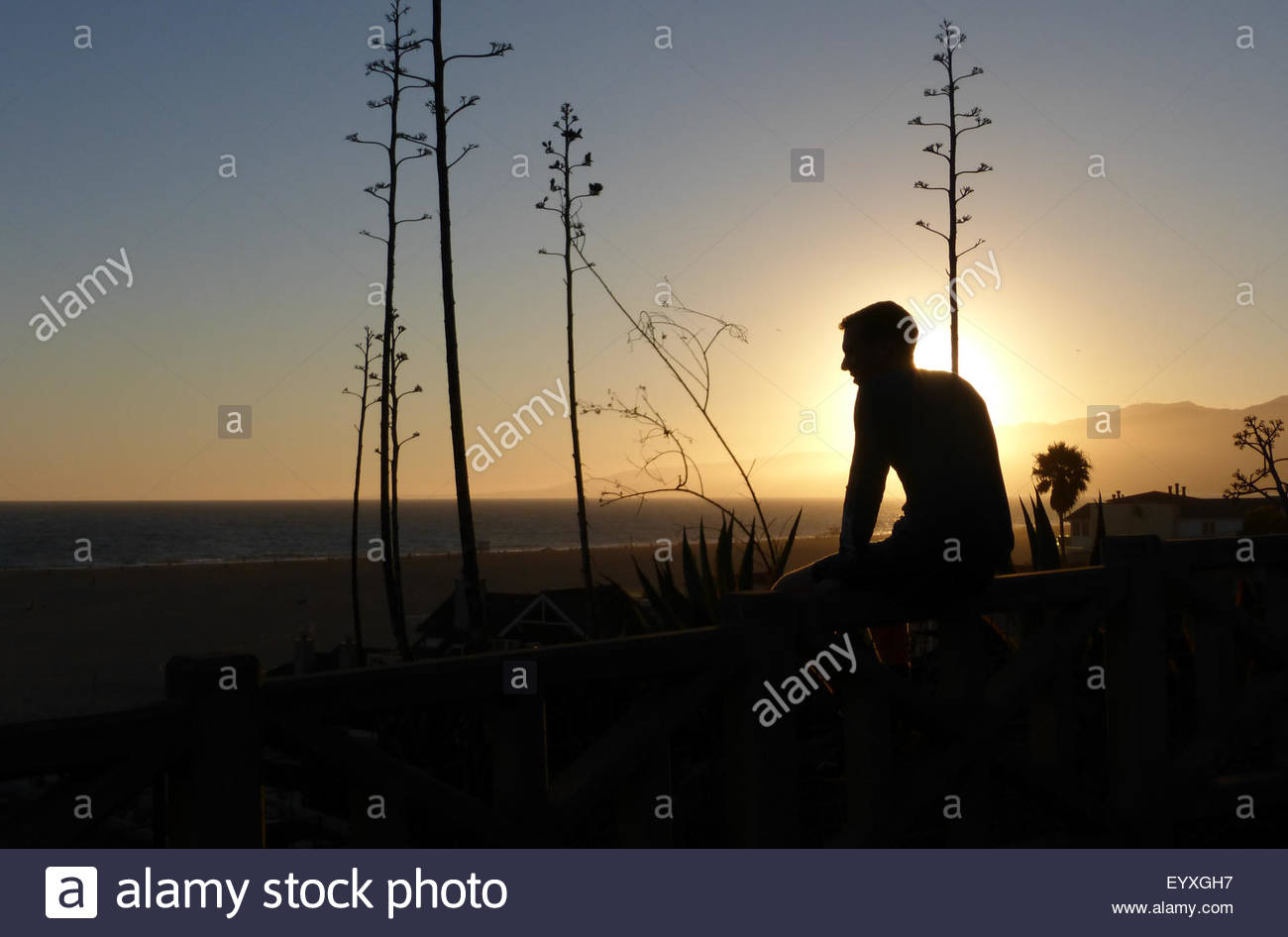 Silhouette of Person Sitting on Wall During Sunset - Stock Image