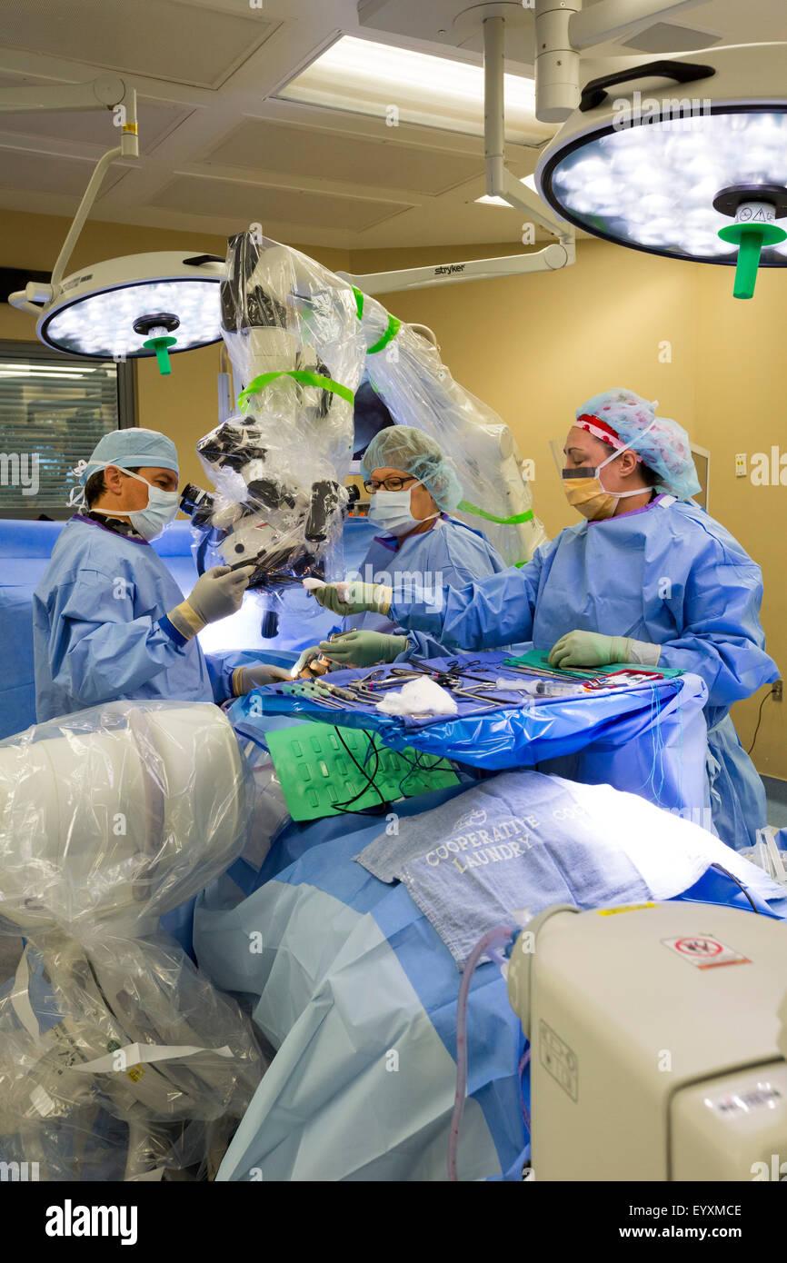 Englewood, Colorado - Dr. Paul Elliott (left) performs minimally invasive lumbar spine surgery at Swedish Medical - Stock Image