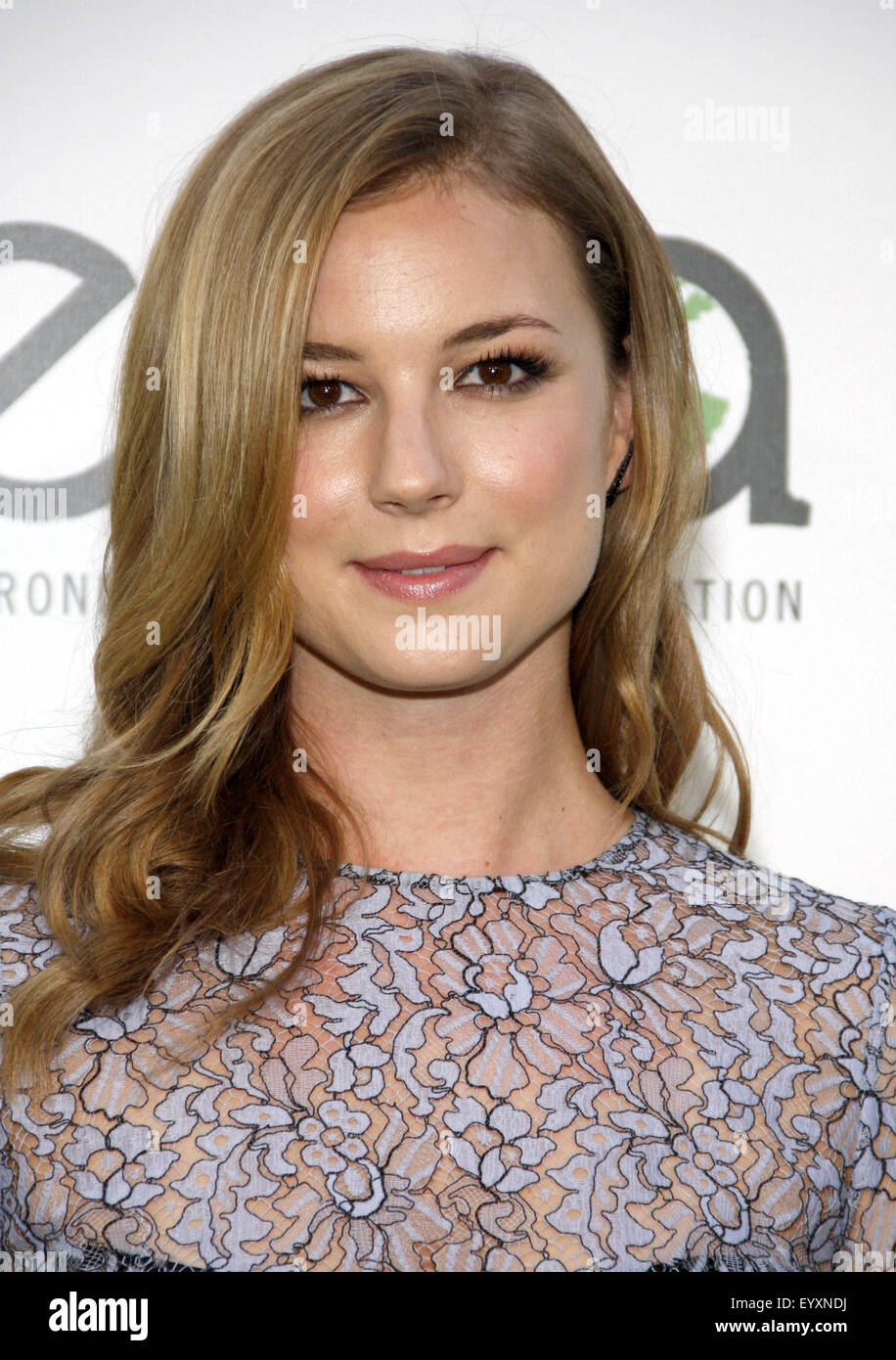 Communication on this topic: Trophies Nude Celebs Forum, 18-emily-vancamp/