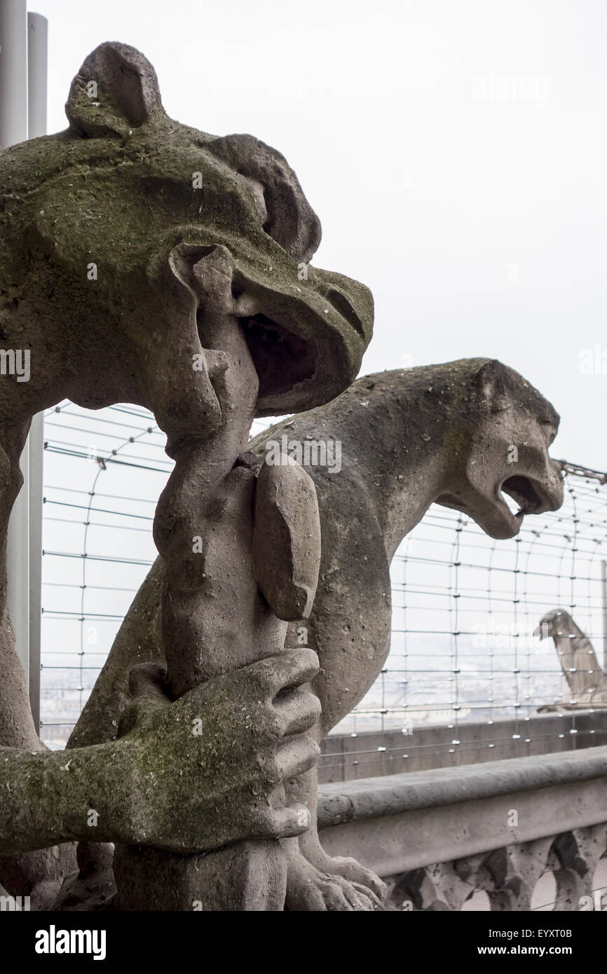 Two Gargoyles At Notre Dame - Stock Image