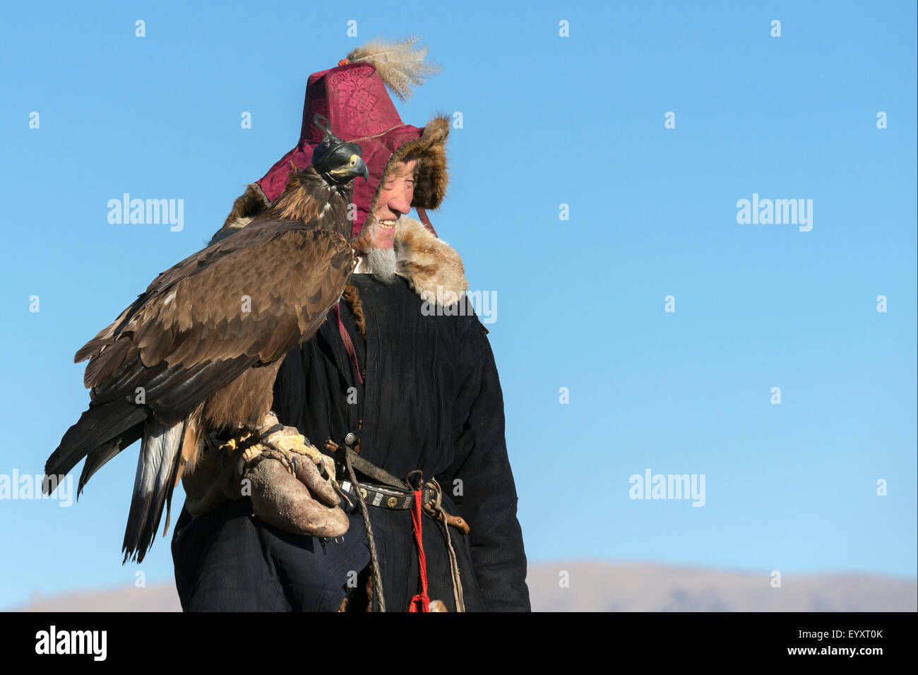 Eagle hunter and golden eagle scanning the valley below, west of Olgii, Western Mongolia - Stock Image