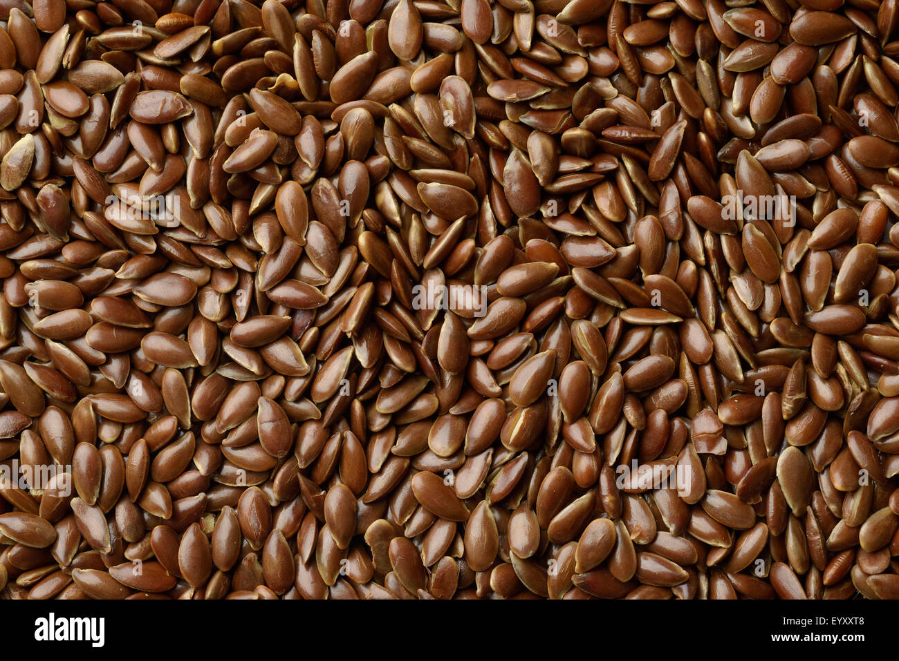 Close Up of Brown Flaxseed - Stock Image