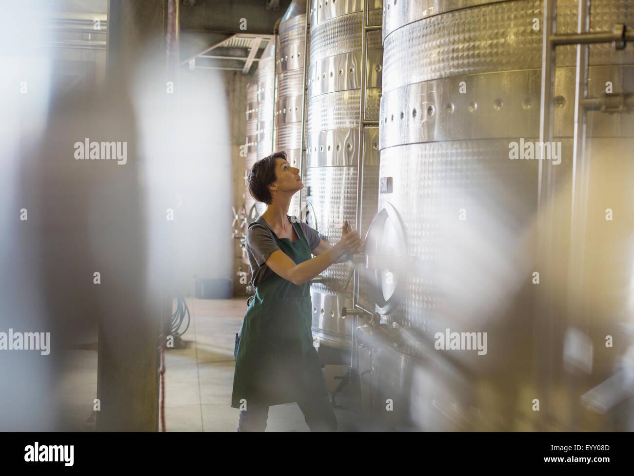 Vintner checking stainless steel vat in winery cellar - Stock Image