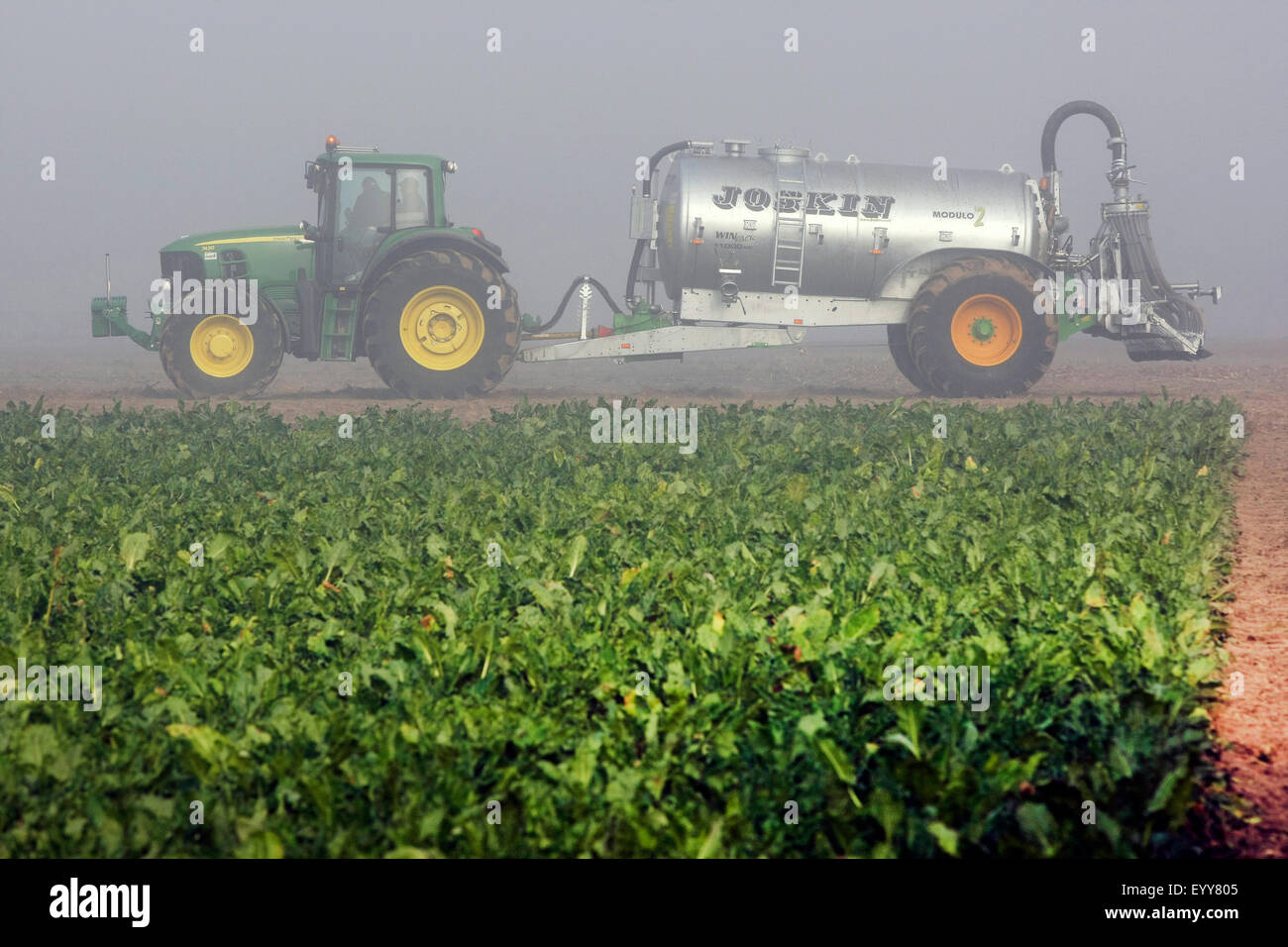 tractor spreading liquid manure on a field, Belgium - Stock Image