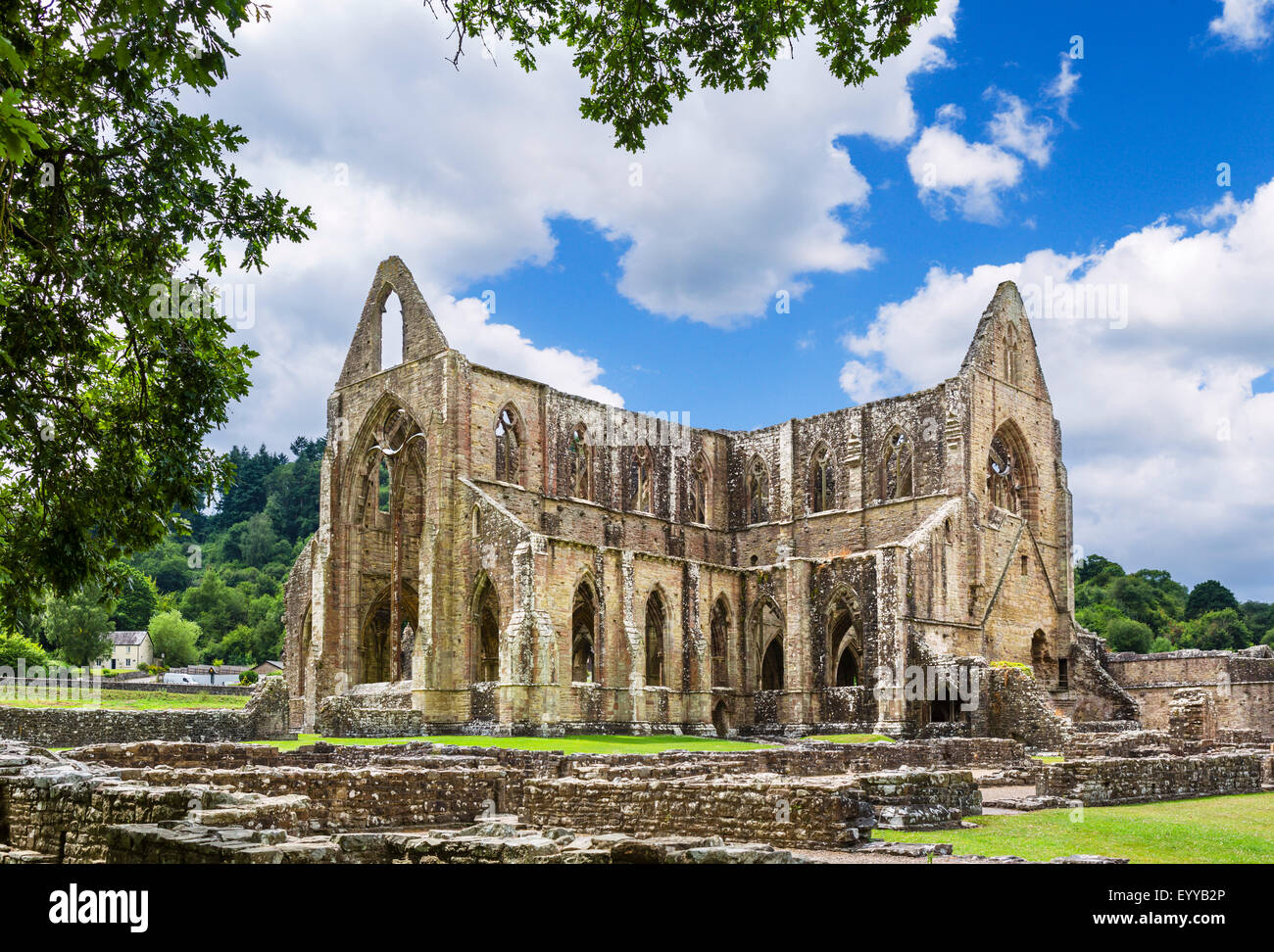 Tintern Abbey. The ruins of Tintern Abbey, near Chepstow, Wye Valley, Monmouthshire, Wales, UK - Stock Image