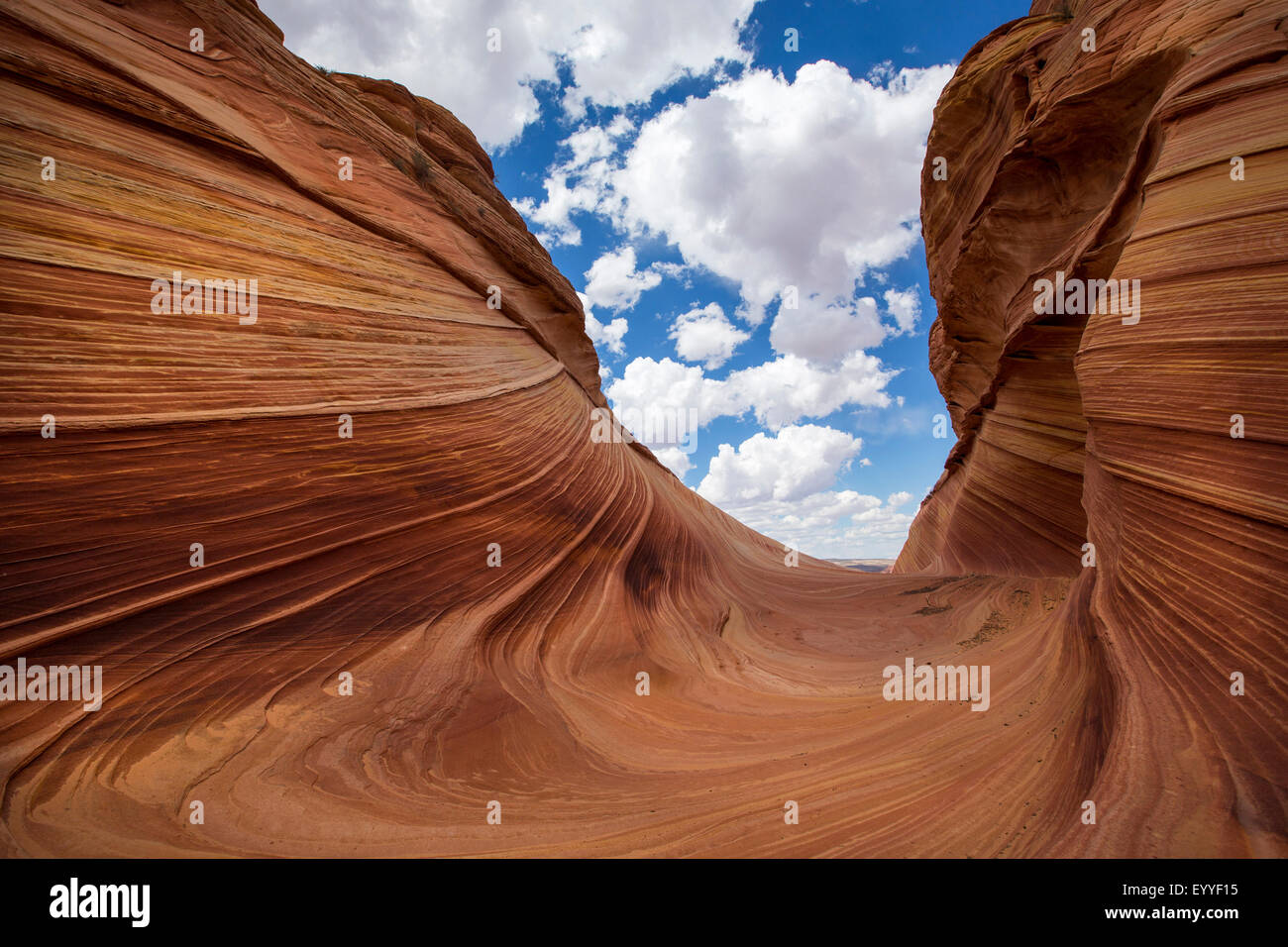 Grooves in desert rock formations, Coyote Buttes, North Coyote Buttes, United States Stock Photo