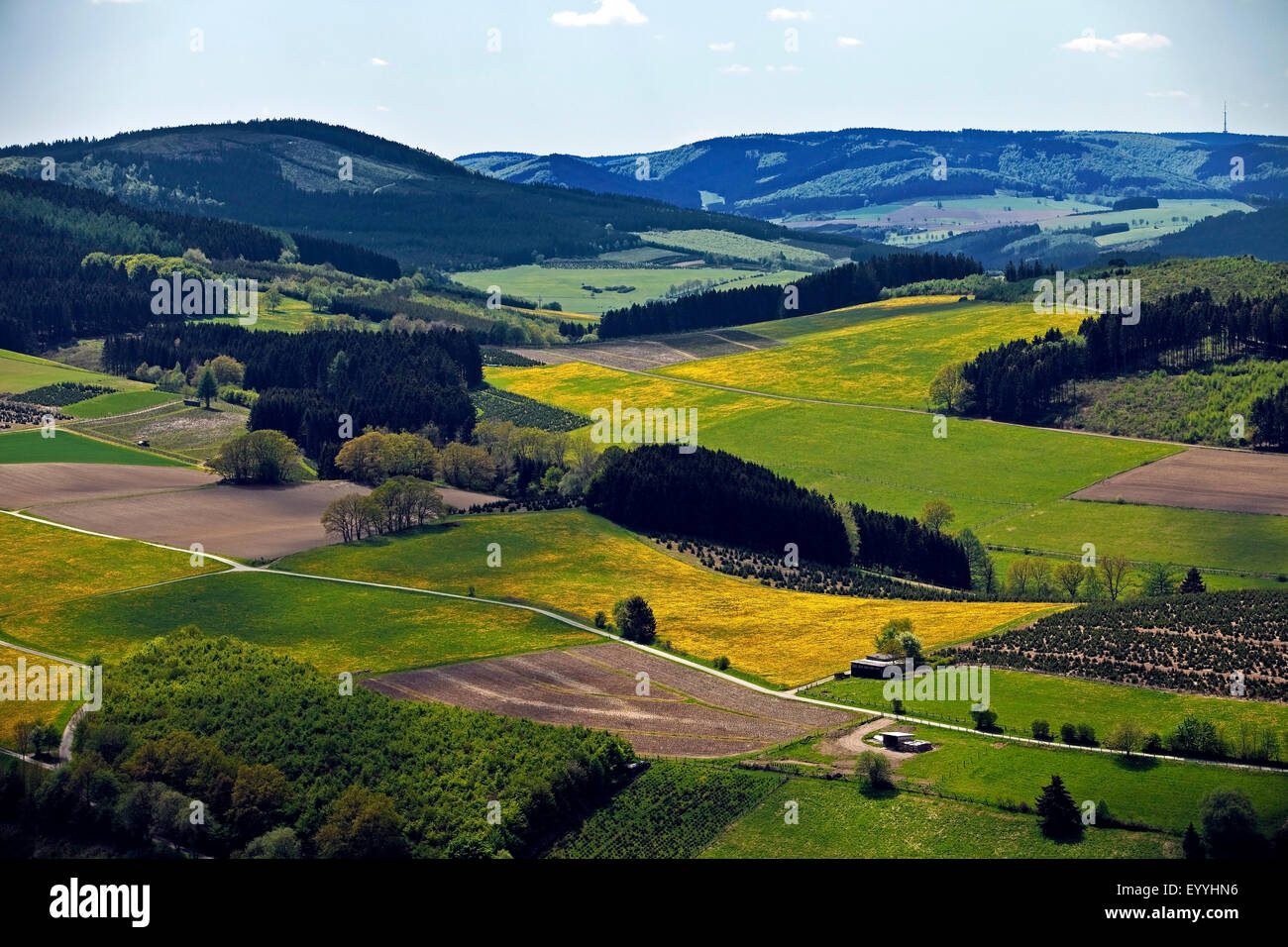 low mountain scenery near Bruchhausen in spring, Germany, North Rhine-Westphalia, Sauerland, Olsberg Stock Photo