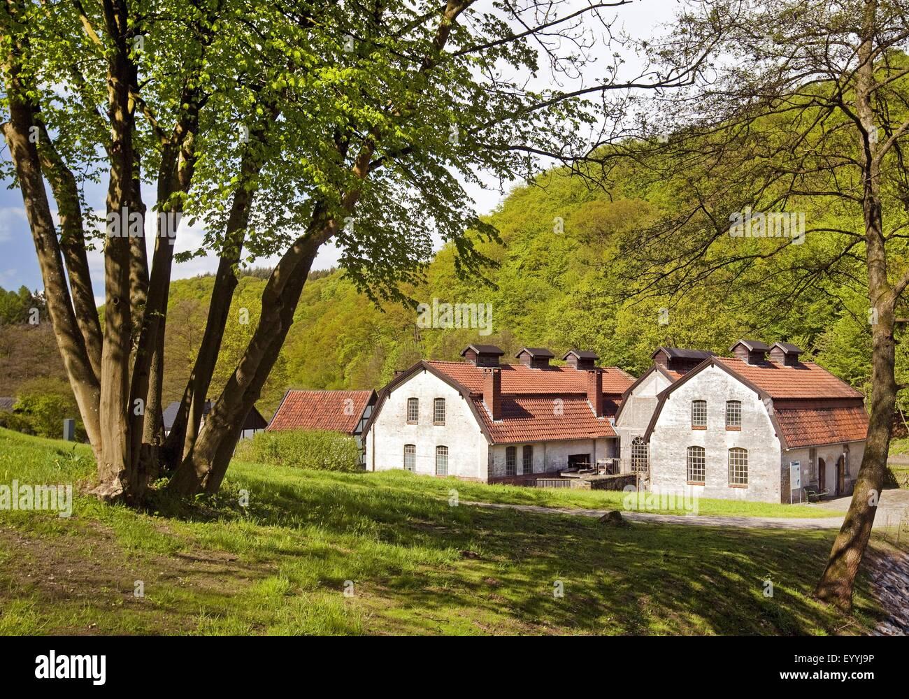 old zinc rolling mill of Hagen Open-air Museum, Germany, North Rhine-Westphalia, Ruhr Area, Hagen - Stock Image