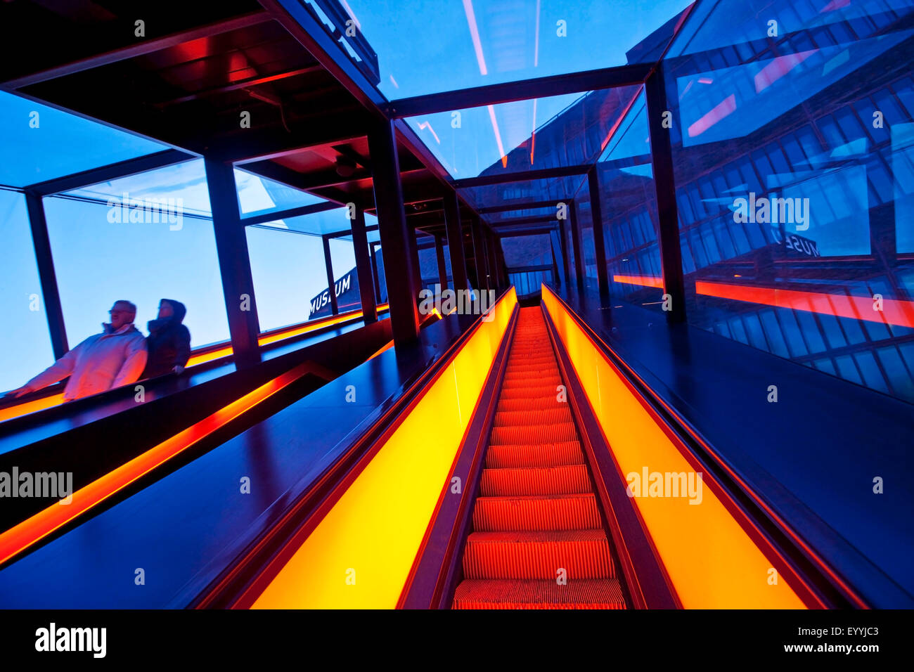illuminated gangway of Zollverein Schacht XII in twilight, Germany, North Rhine-Westphalia, Ruhr Area, Essen - Stock Image