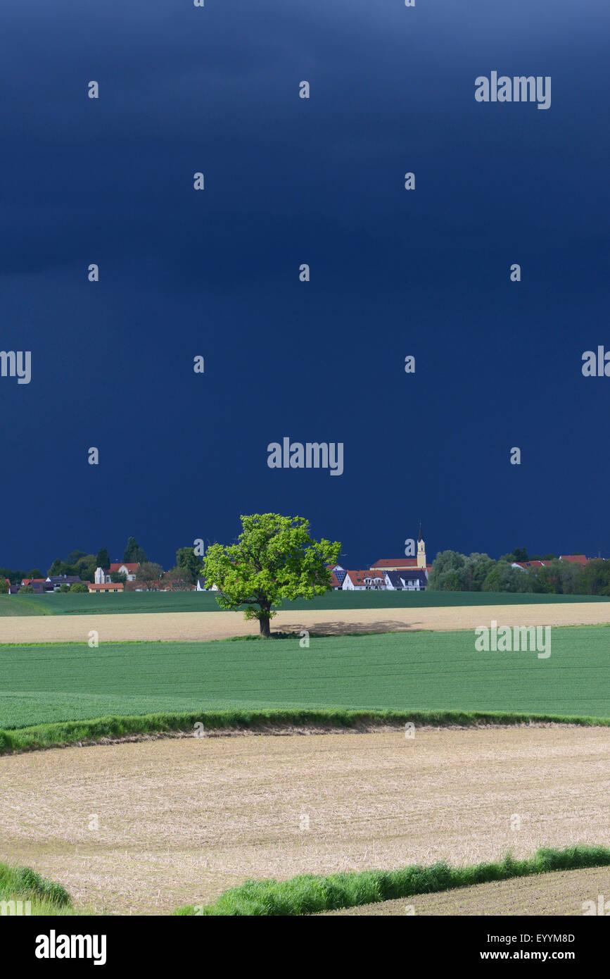 threateningly dark thunderstorm over field landscape with village, Germany, Bavaria - Stock Image