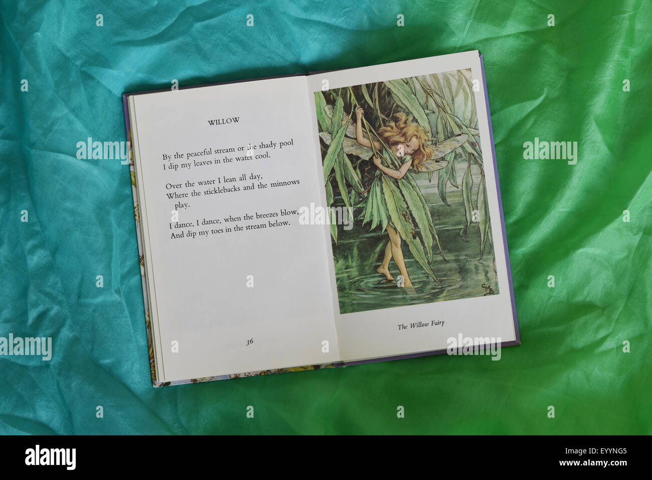 The Willow Fairy And Willow Poem From Flower Fairies Of The