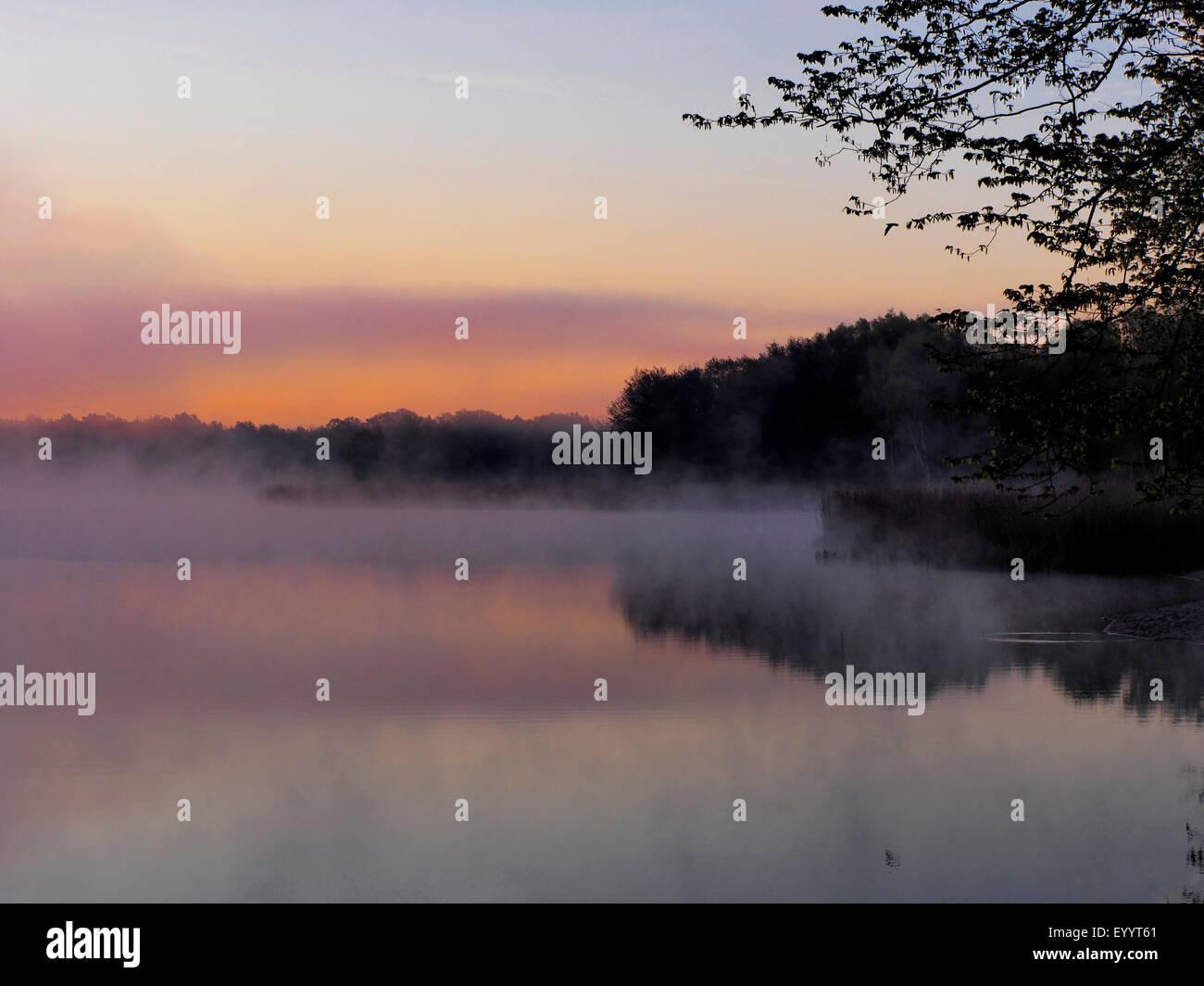 morning mood at a lake, Germany, Brandenburg, Koerba/Niederer Flaeming - Stock Image