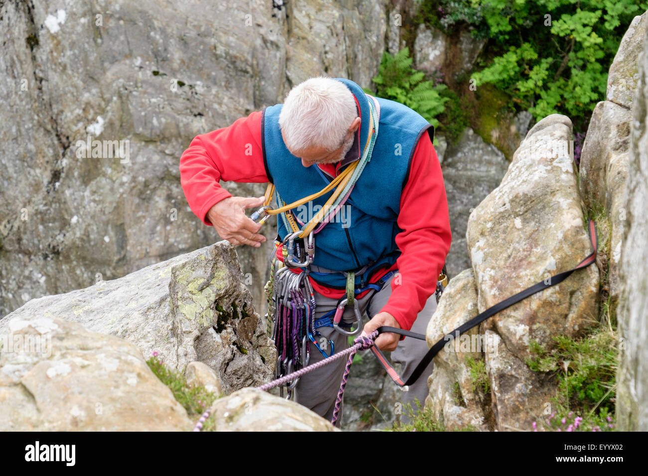 Experienced rock climber wearing a climbing harness preparing a belay tying in with a top rope tape and karabiners. - Stock Image