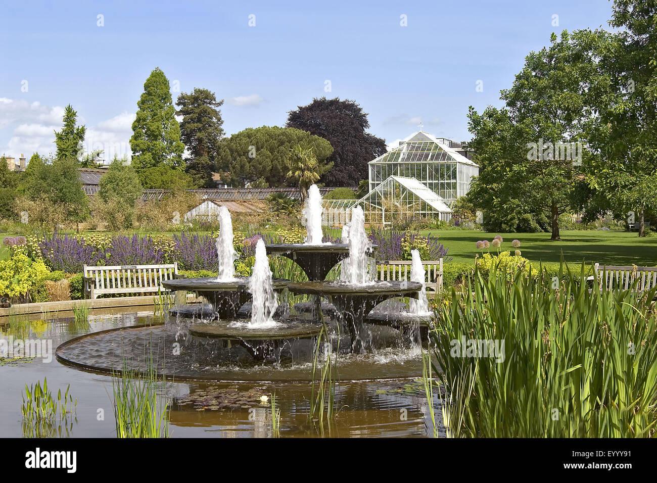 Botanical Gardens of the University of Cambridge, United Kingdom, England, Cambridge - Stock Image