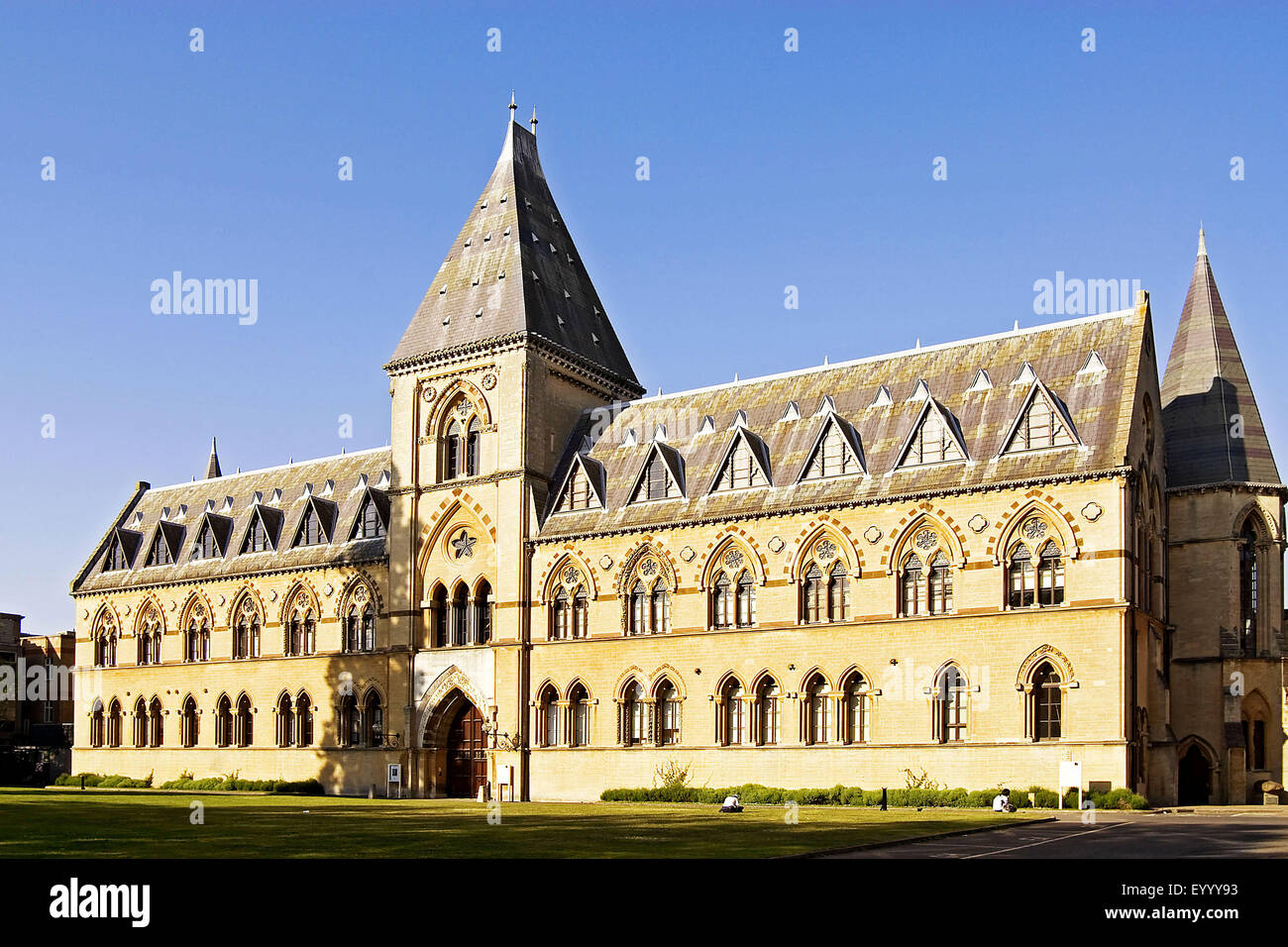 Oxford University Museum of Natural History , United Kingdom, England, Oxford - Stock Image