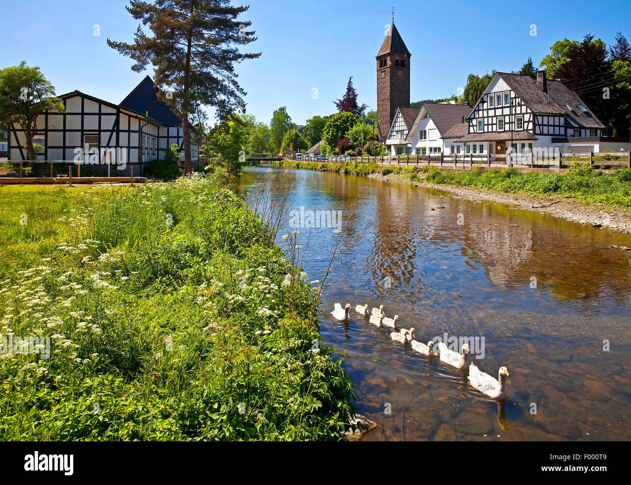 River Lenne district Saalhausen, Germany, North Rhine-Westphalia, Sauerland, Lennestadt Stock Photo