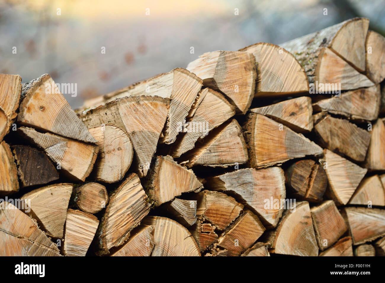 billet of wood, Austria - Stock Image