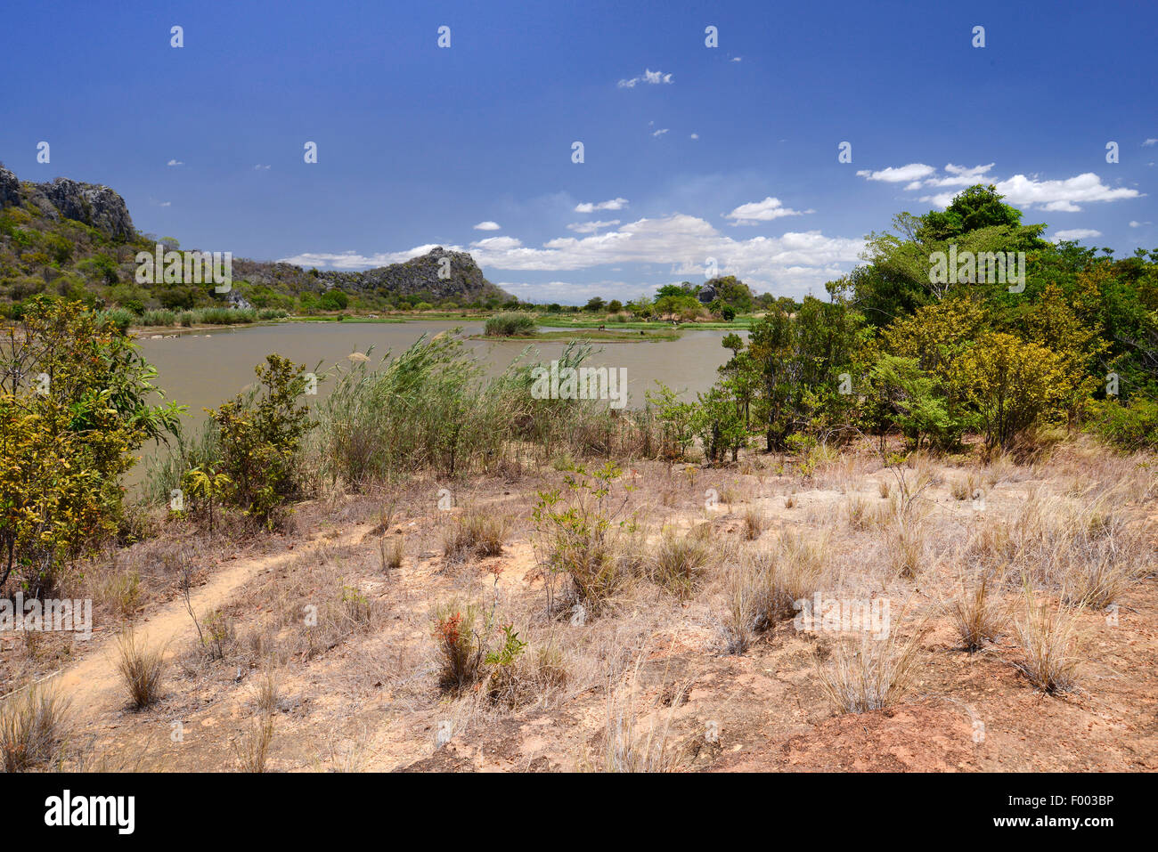lake at the Iharana Bush Camp, Madagascar, Antsiranana, Ankarana National Park - Stock Image