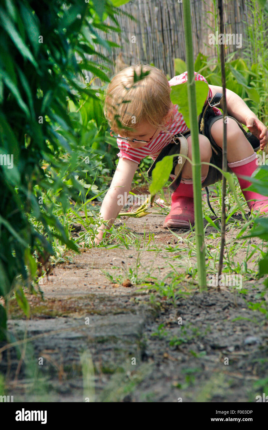 little girl playing in a garden plot, Germany Stock Photo