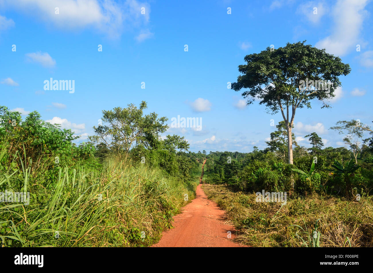 Dirt road into the Ghanaian countryside - Stock Image