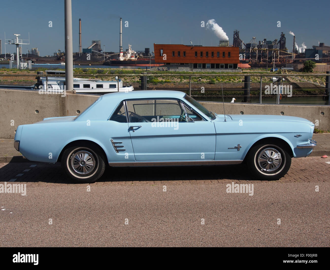 1966 ford mustang light blue pic3 stock image