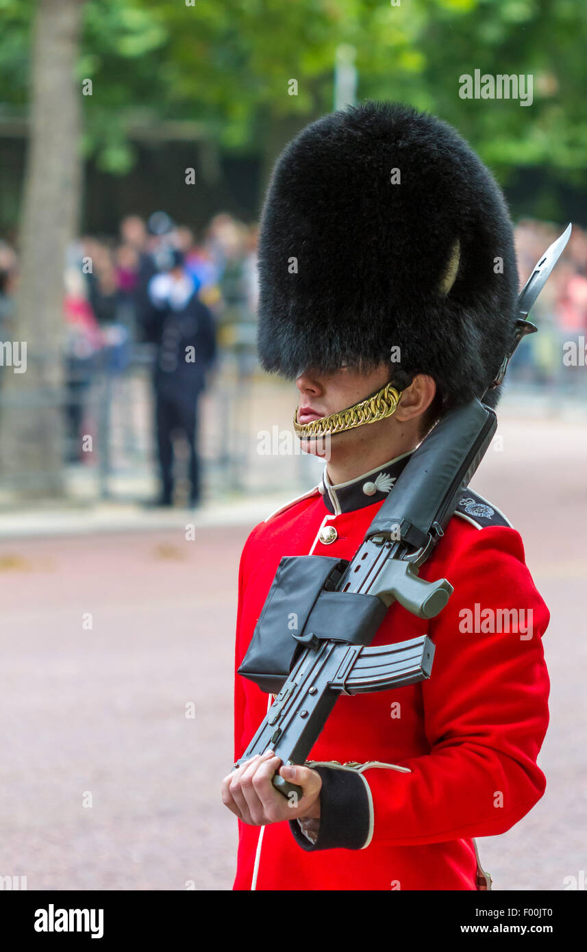 Trooping The Colour The Mall . London 2015 .The Welsh Guards troop the Colour at the annual Queens Birthday Parade - Stock Image