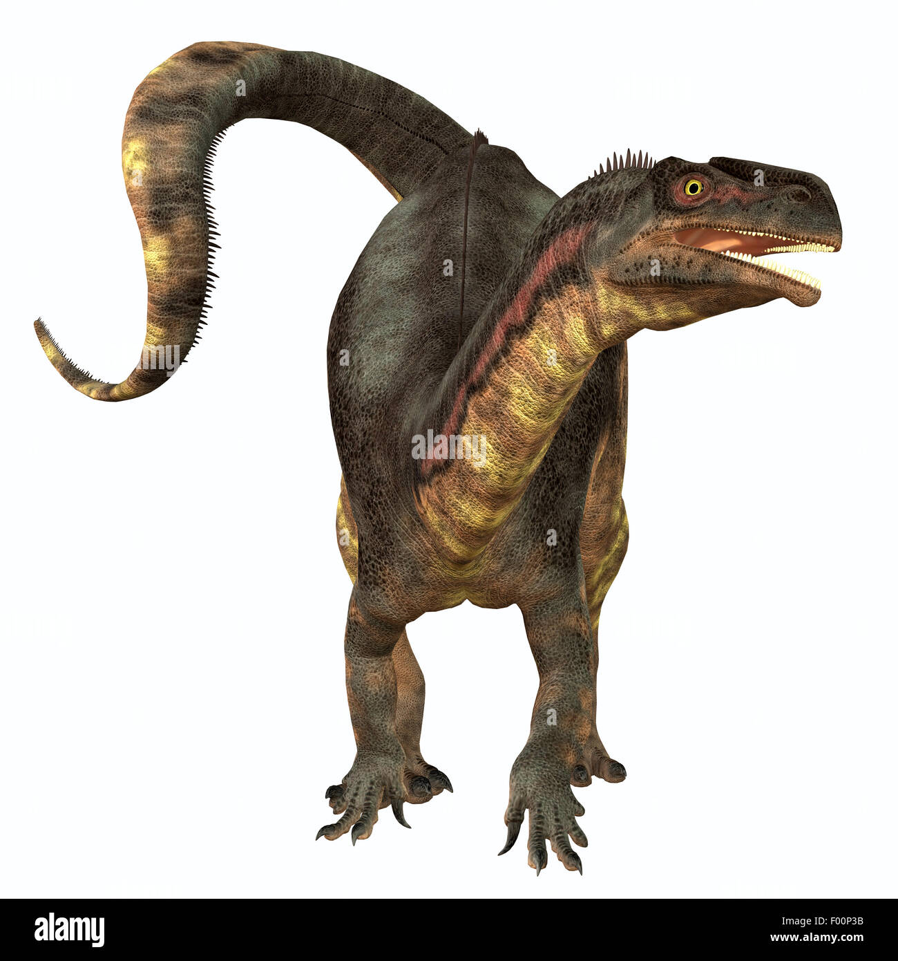 Plateosaurus was a prosauropod herbivorous dinosaur that lived in the Triassic Age of Europe. - Stock Image