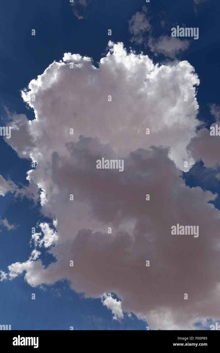 Backlit Cumulus Congestus Cloud - Stock Image