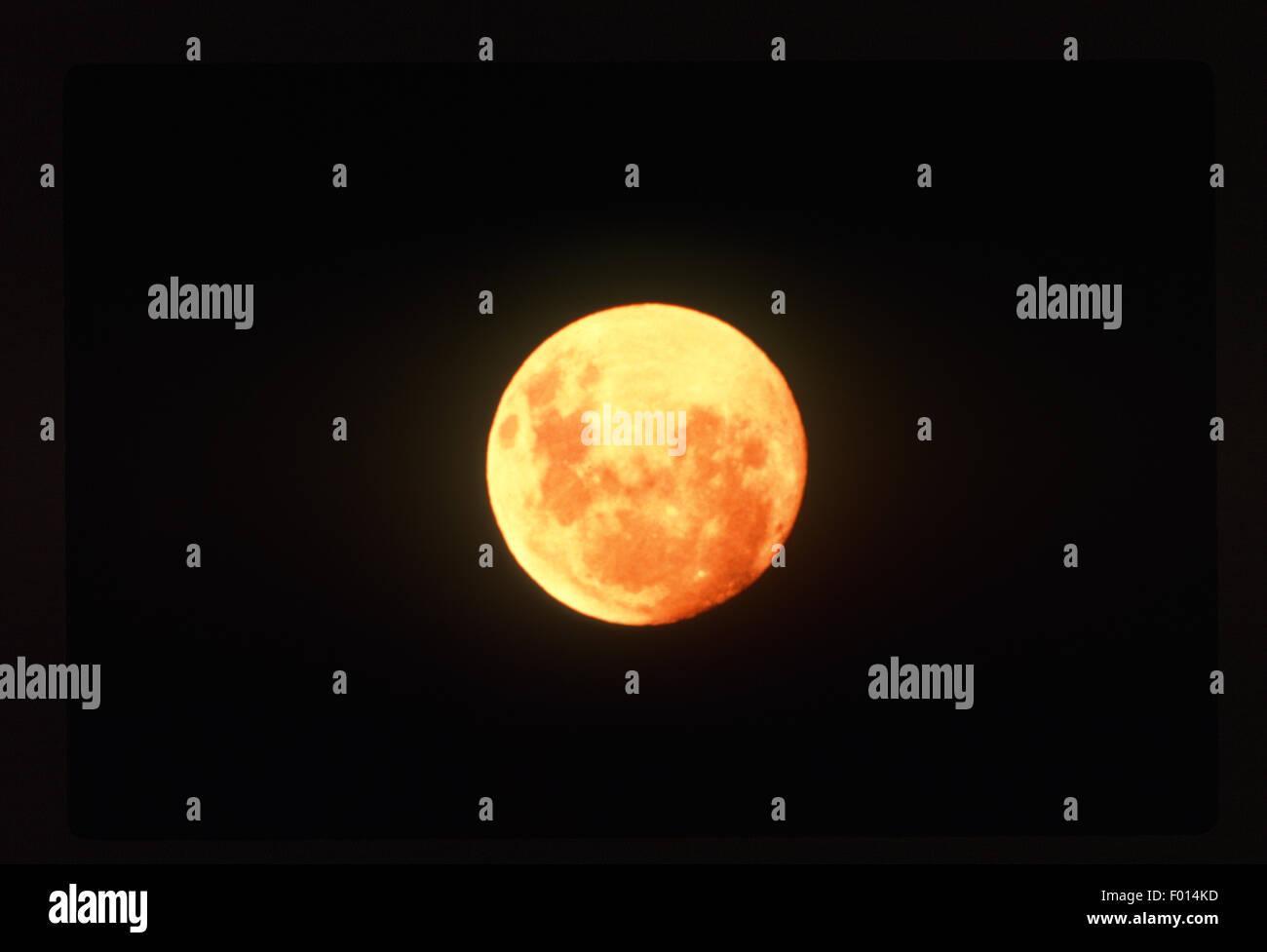 orange full moon in black sky - Stock Image