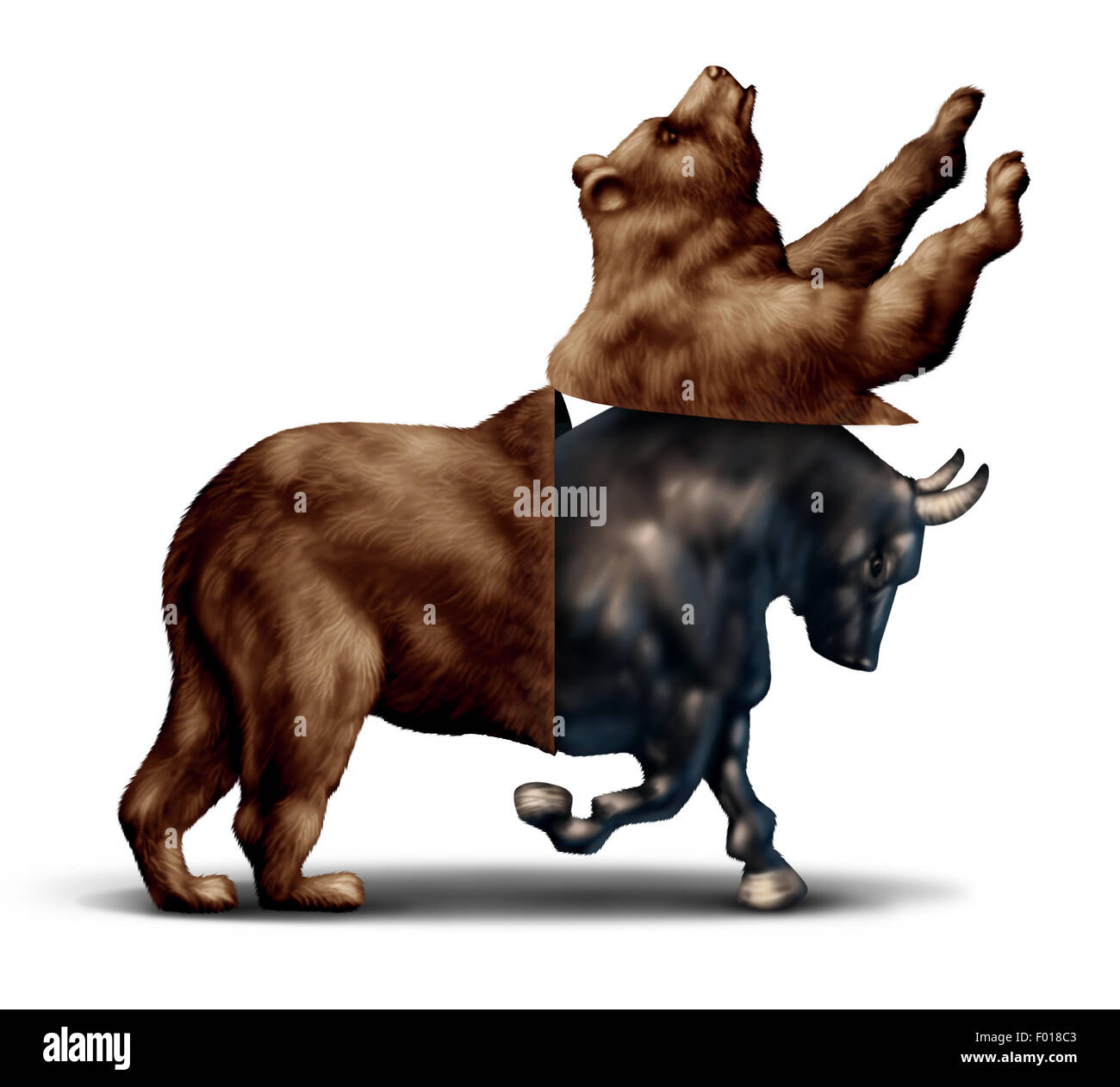 Bull market economic recovery financial business concept as a bear opening up and revealing an emerging bullish - Stock Image