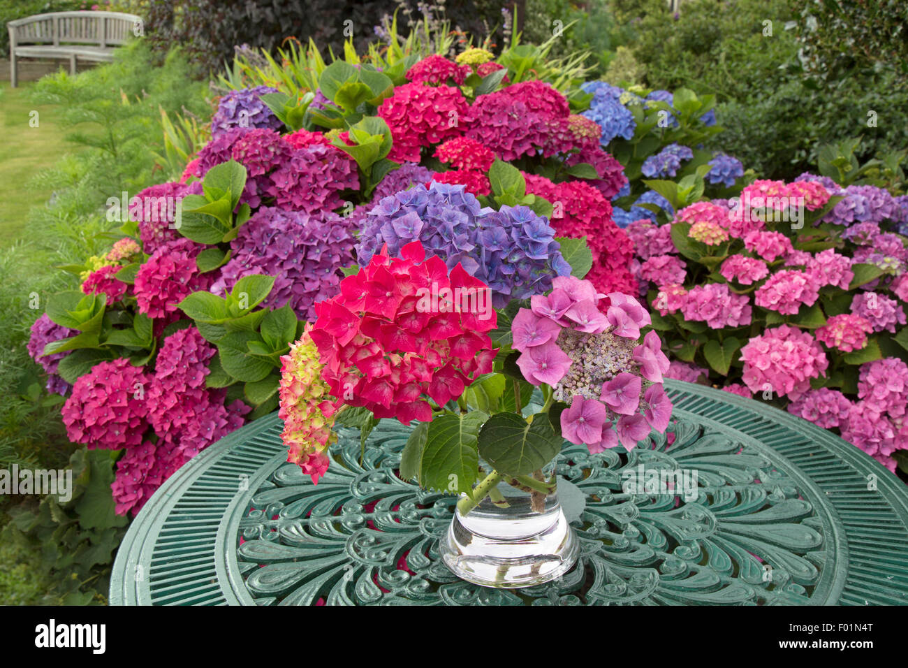 Hydrangeas and garden table with flower arrangement in Summer - Stock Image